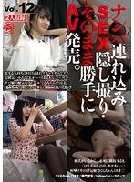SNTS-012 ナンパ連れ込みSEX隠し撮り・そのまま勝手にAV発売。 Vol.12
